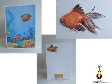 ART_2010_03_carte_triangle_aquarium_1