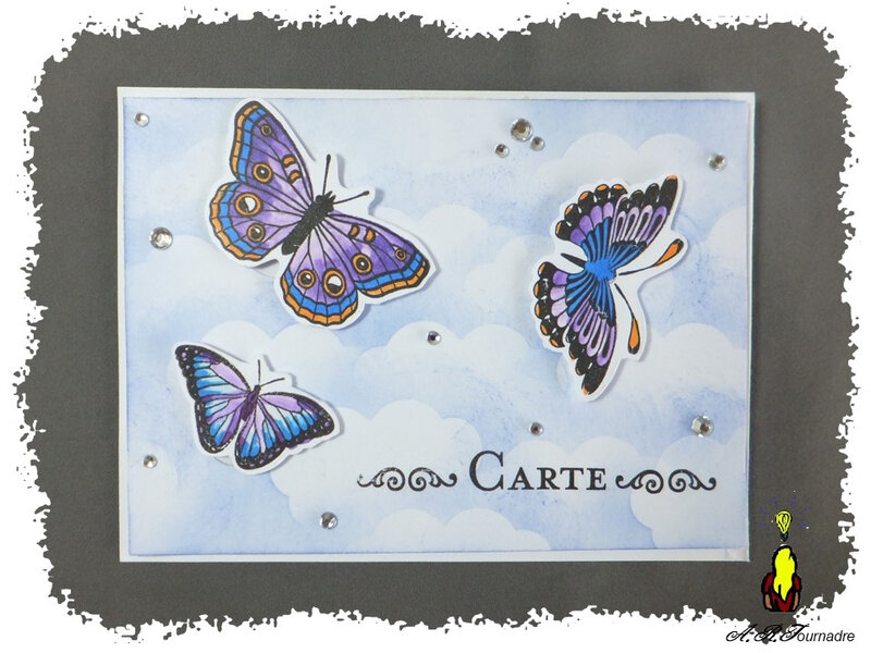 ART 2019 05 bee-happy-papillons 1