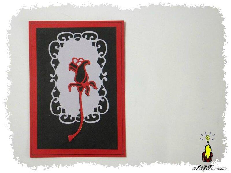 ART 2014 10 rose rouge et noir 2