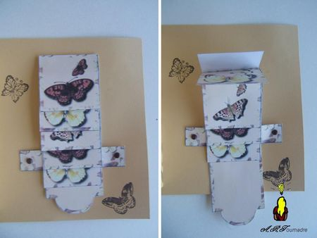 ART_2011_01_papillons_4
