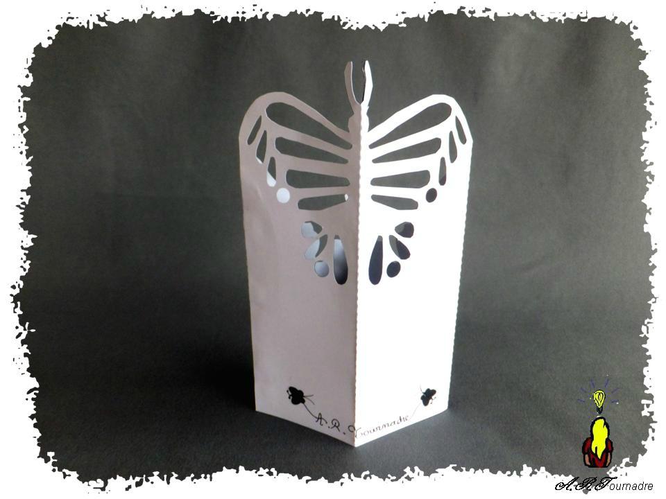 ART 2014 01 papillon en X 2