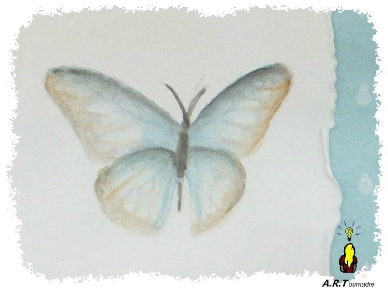 ART 2017 08 papillon aquarelle 7
