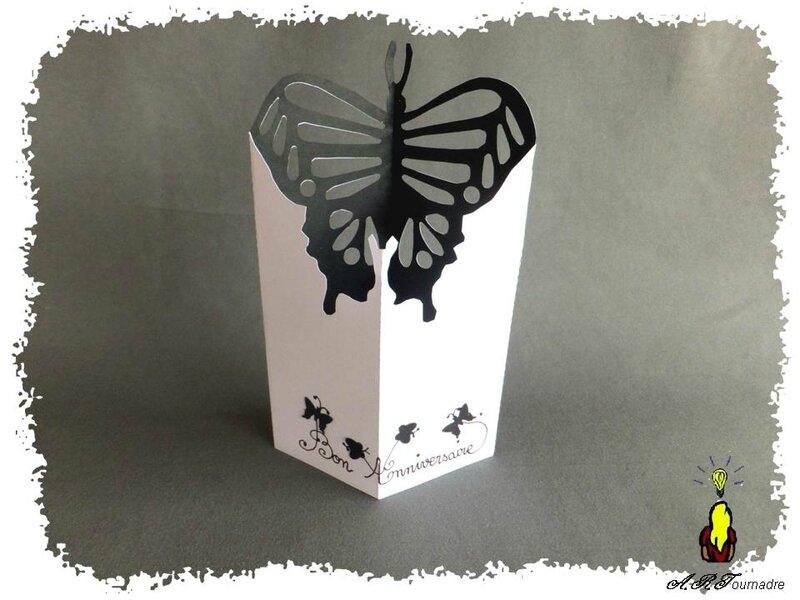 ART 2014 01 papillon en X 1