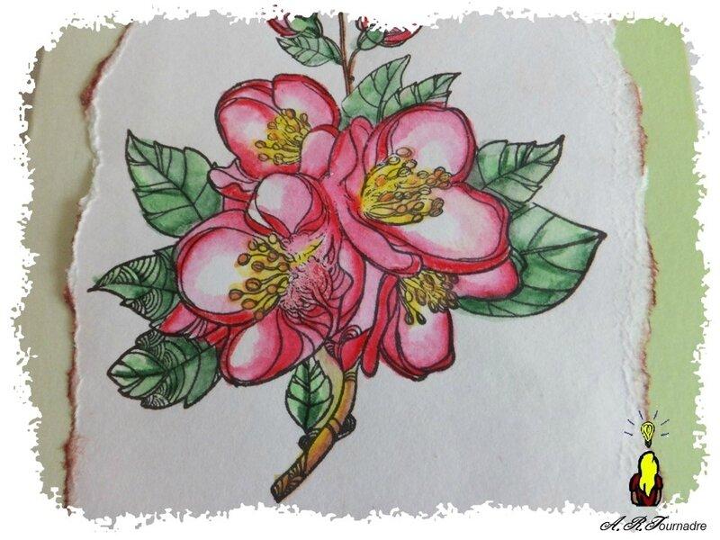 ART 2018 01 fleurs aquarelle 4