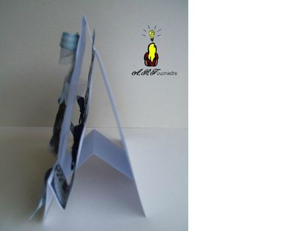 ART 2011 11 carte a poser fee bleue2