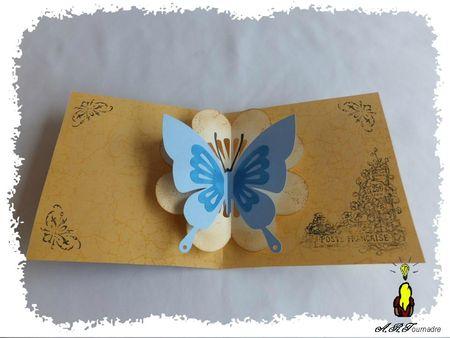 ART 2013 05 carte papillon 2