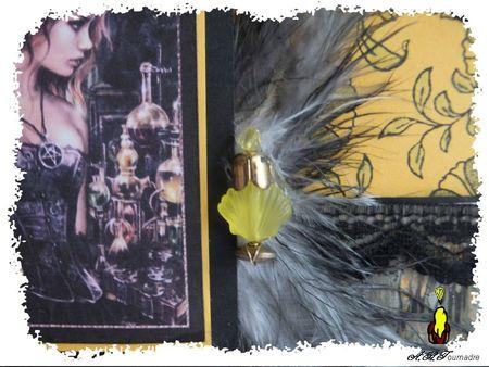 ART 2013 04 gothique jaune & fioles 2