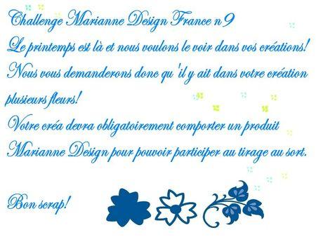 Challenge Marianne Design 9