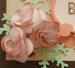 ARTICLE roses a la perforatrice mini