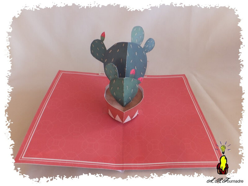 ART 2018 03 cactus pop-up 4