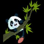 gif-Panda 3