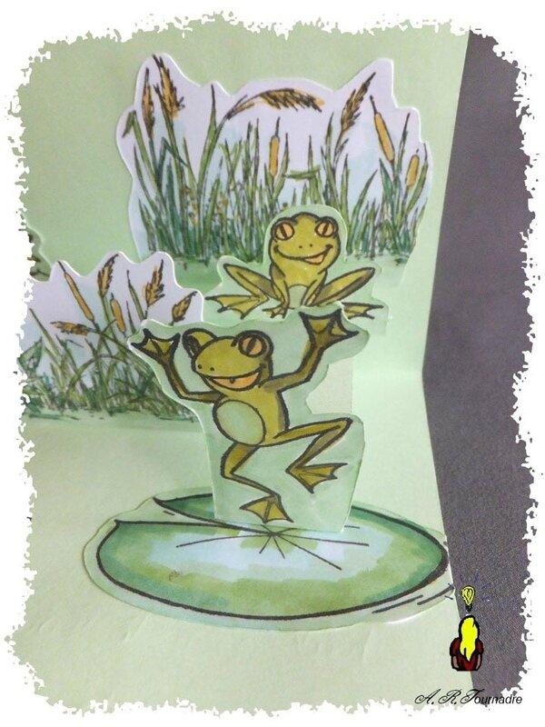 ART 2017 05 marre aux grenouilles 7