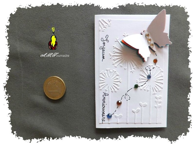 ART 2013 10 ATC C&S papillon 1