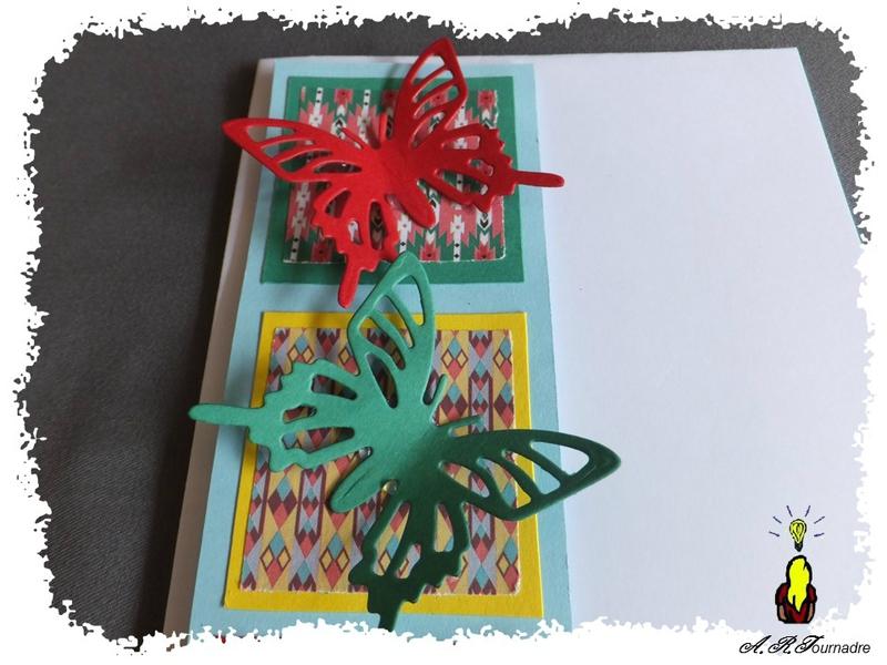 ART 2016 06 carte C&S papillons 2