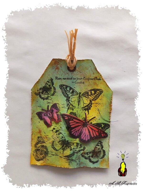 ART 2016 03 tag encres et papillons 1