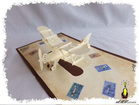 ART 2013 05 avion biplan vintage 3