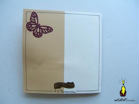 ART_2011_01_papillons_5