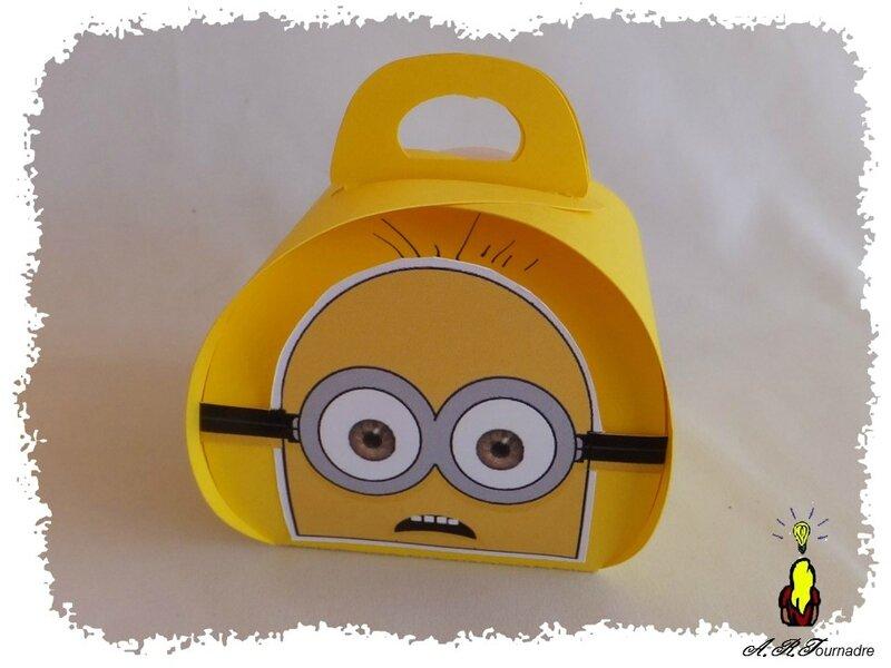 ART 2015 04 boite Minion 1