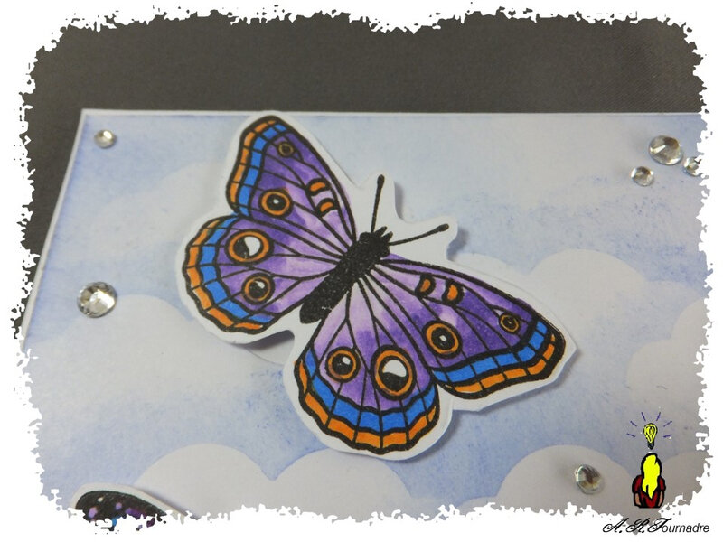 ART 2019 05 bee-happy-papillons 2
