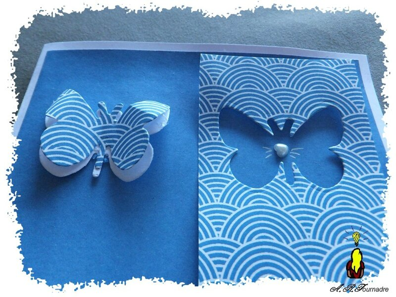 ART 2015 06 C&S papillon 2