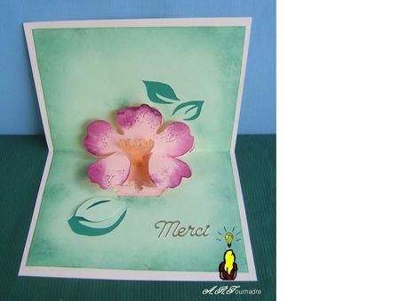 ART_2010_09_fleur_rose_2