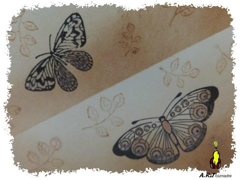 ART 2017 08 papillons encres 2