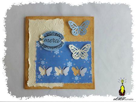 ART 2013 05 carte papillon 1
