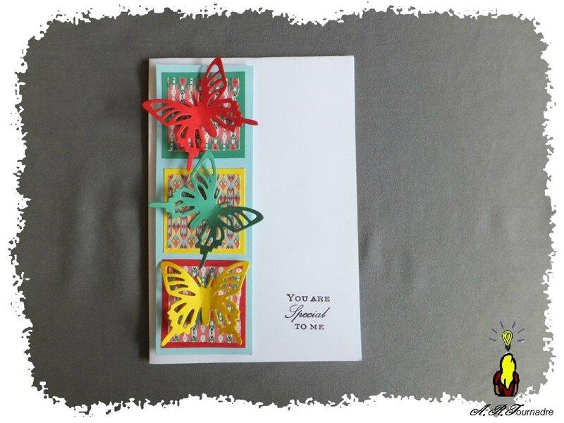 ART 2016 06 carte C&S papillons 1