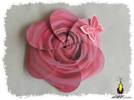 ART 2013 05 rose pliable 1