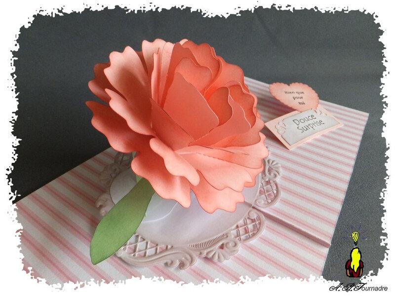 ART 2020 04 oeillet pop-up rose 6